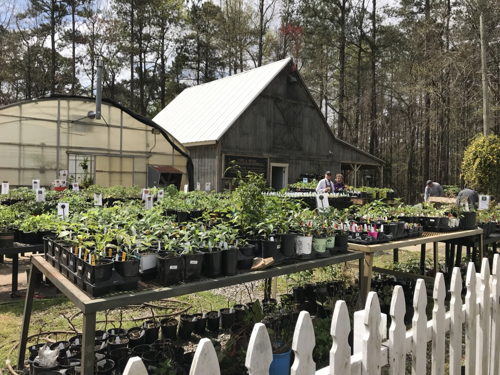 dunwoody community garden and orchard greenhouse